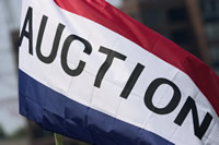 Government Auction Flag